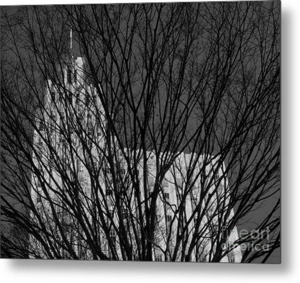 Metal Print featuring the photograph Seasonal View Bw by Patrick M Lynch