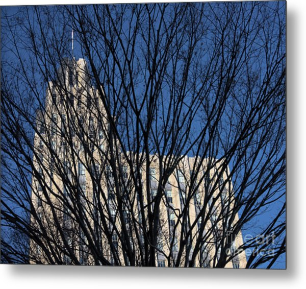 Metal Print featuring the photograph Seasonal View C by Patrick M Lynch