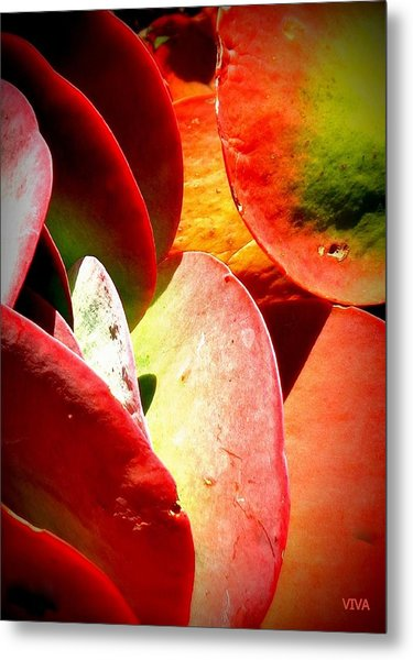 Secret  Life  Of  Plants Metal Print