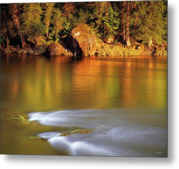 Selway River Metal Print by Leland D Howard