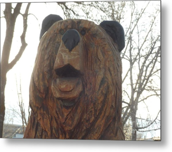 Sharon's Bear Portrait Metal Print