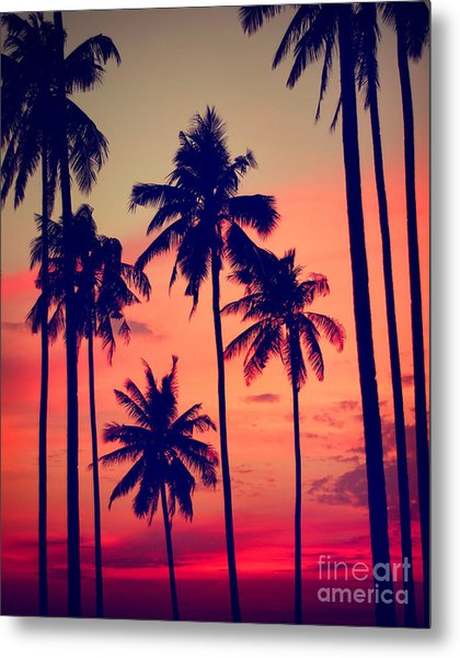 Silhouette Coconut Palm Tree Outdoors Metal Print