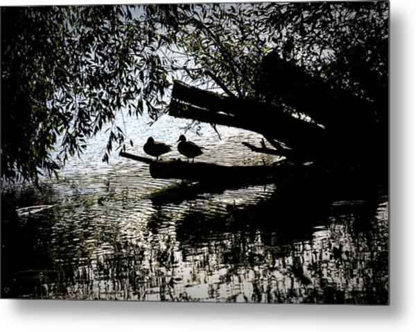 Metal Print featuring the photograph Silhouette Ducks #h9 by Leif Sohlman