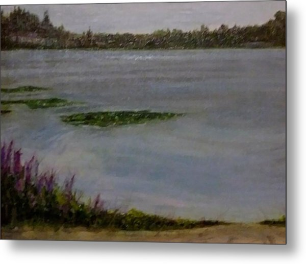 Silver Lake During The Wildfires Metal Print