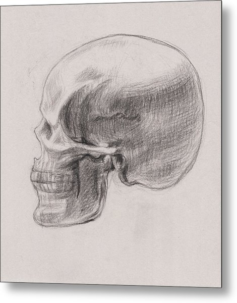 Skull Study Profile Metal Print