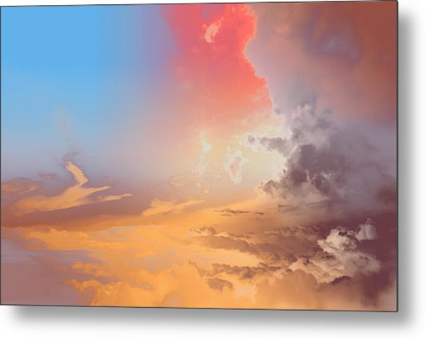 Sky Fight Metal Print