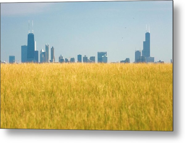 Skyscrapers Arising From Grass Metal Print by By Ken Ilio