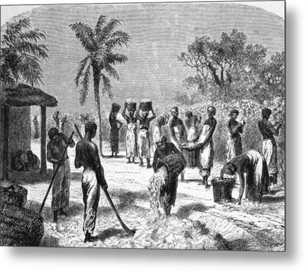 Slaves On The Plantation Metal Print by Hulton Archive