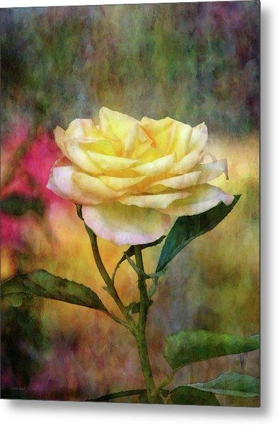 Slight Yellow 5570 Idp_2 Metal Print