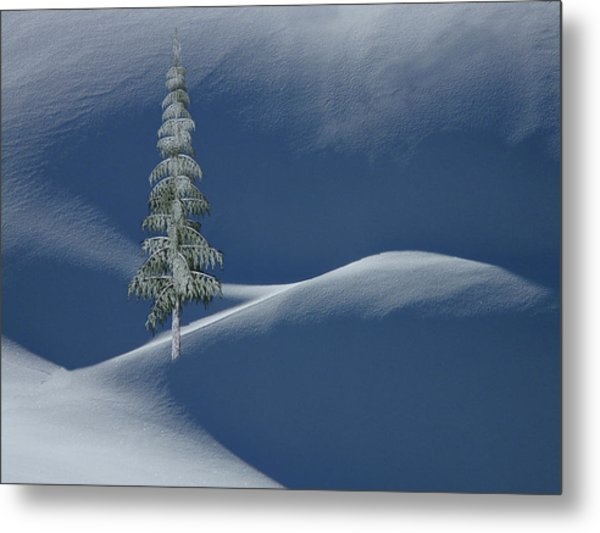 Snow Covered Tree And Mountains Color Metal Print