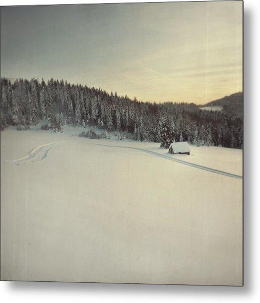 Snow Field Metal Print by Tom
