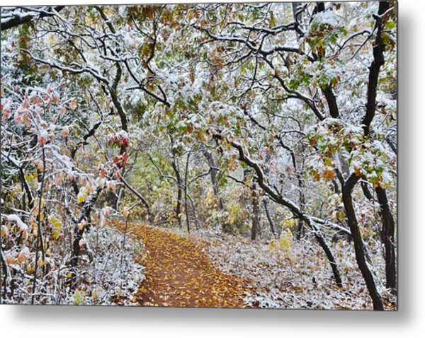 Snow Greets Autumn Metal Print
