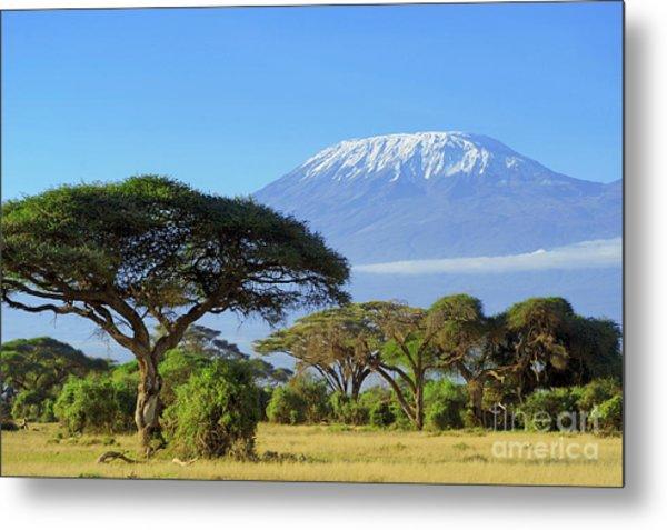 Snow On Top Of Mount Kilimanjaro In Metal Print by Volodymyr Burdiak