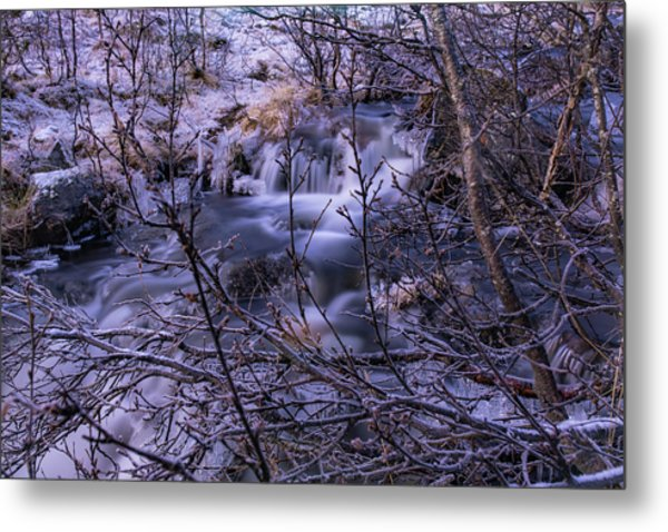 Snowy Forest With Long Exposure Metal Print