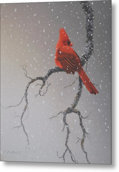 Snowy Perch Metal Print