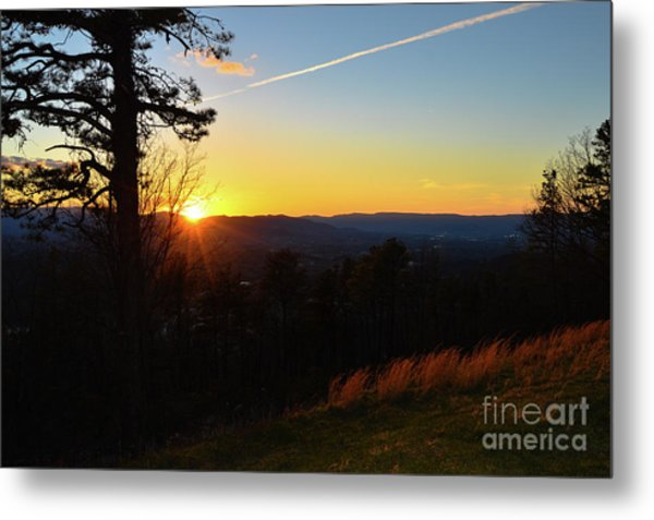 Solace And Pine Metal Print