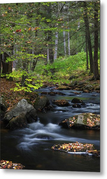 Metal Print featuring the photograph Some Day by Juergen Roth