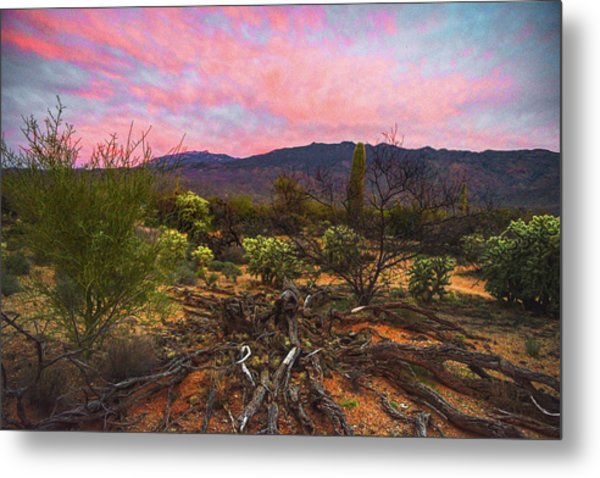 Metal Print featuring the photograph Southwest Day's End by Chance Kafka