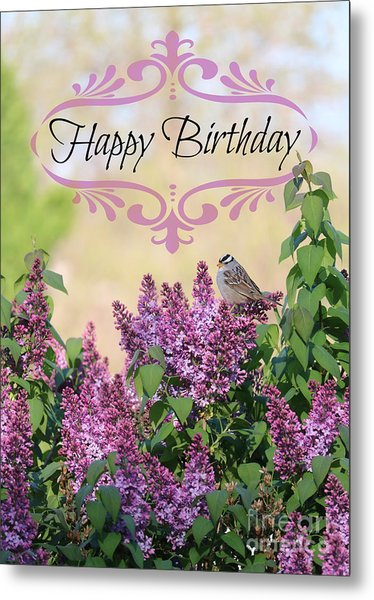 Sparrow In Lilacs Birthday Card Metal Print