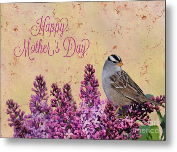 Sparrow In The Lilacs Mother's Day Card Metal Print