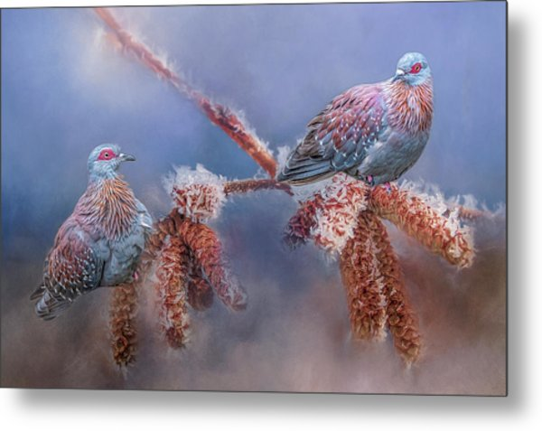 Speckled Pigeons Metal Print