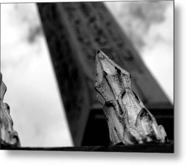 Metal Print featuring the photograph Spike by Edward Lee