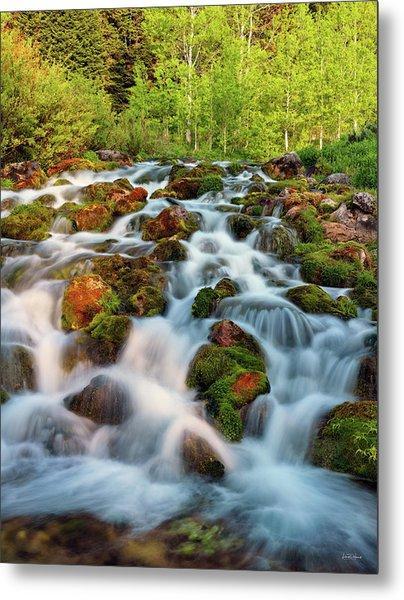 Spring Cascade Metal Print by Leland D Howard