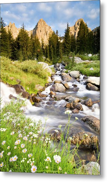 Spring Flowers And Flowing Water Below Metal Print