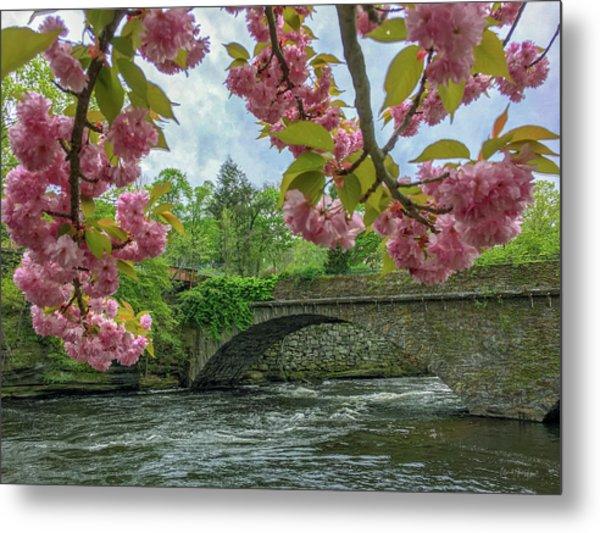Spring Garden On The Bridge  Metal Print