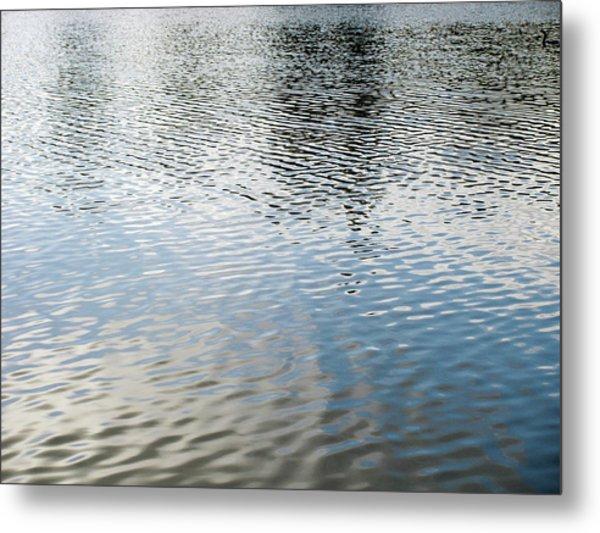 Spring Lake_3931_12 Metal Print