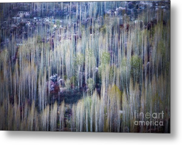 Metal Print featuring the photograph Spring Strokes by Awais Yaqub