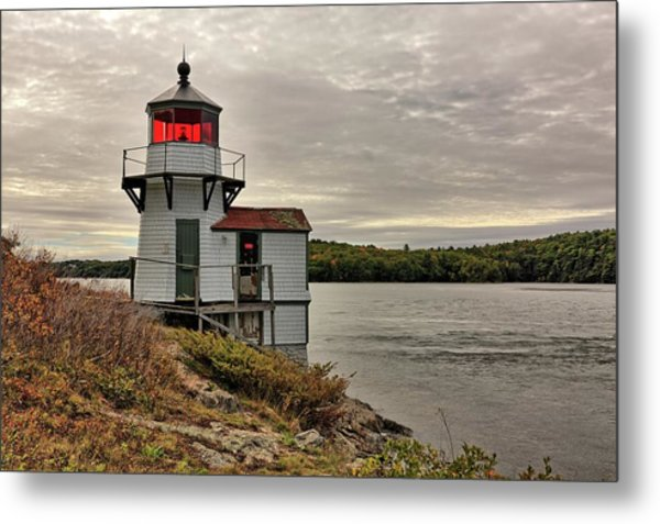 Squirrel Point Light Metal Print