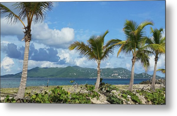 St. John View Metal Print