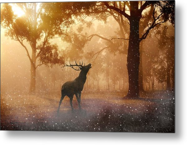 Stag In The Forest Metal Print