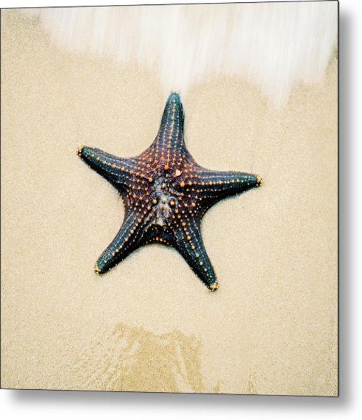 Starfish On The Beach Sand. Close Up. Metal Print