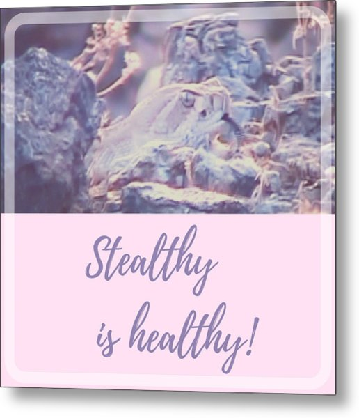 Metal Print featuring the photograph Stealthy Is Healthy by Judy Kennedy