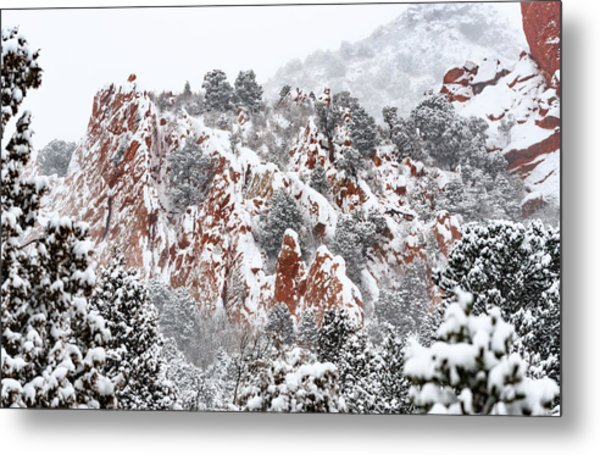 Stillness Of A Snow Covered Morning Metal Print