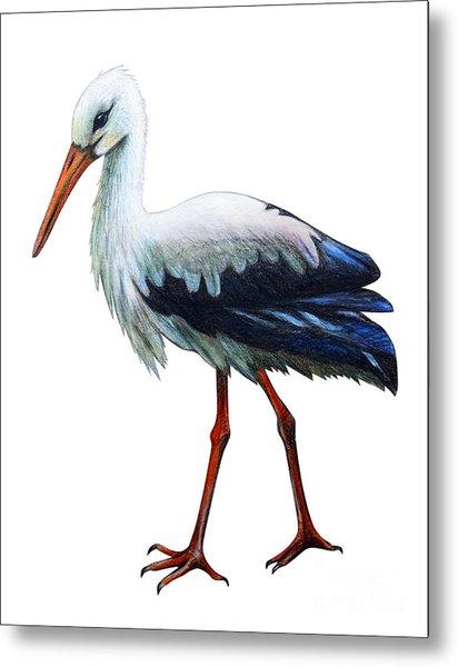 Stork Drawing Ciconia Metal Print