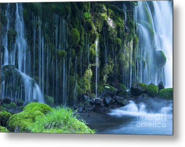Stream In Green Forest Metal Print
