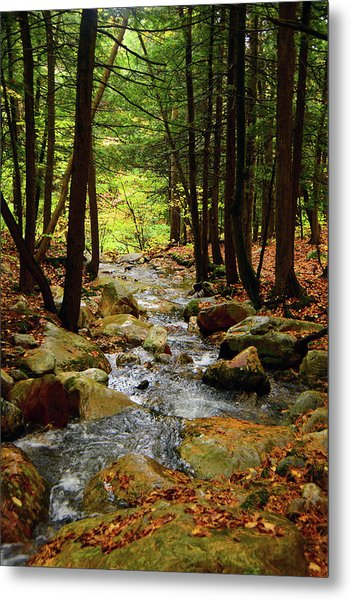 Metal Print featuring the photograph Stream Rages Vertical Format by Raymond Salani III