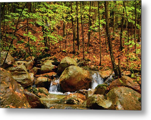 Metal Print featuring the photograph Stream Rages In Ma by Raymond Salani III