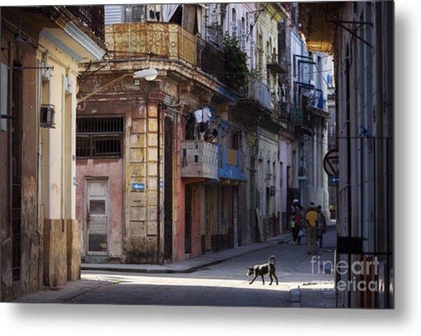 Street Of Havana, Cuba Metal Print