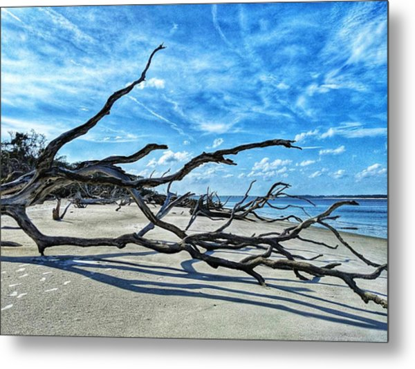 Stretch By The Sea Metal Print