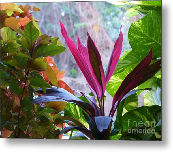 Metal Print featuring the photograph In The Pink by Rosanne Licciardi