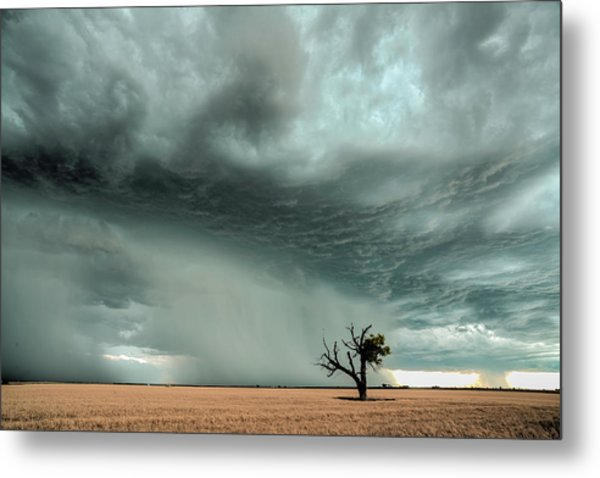 Strong Lone Tree Metal Print