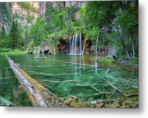 Submerged Log, Hanging Lake Colorado Metal Print