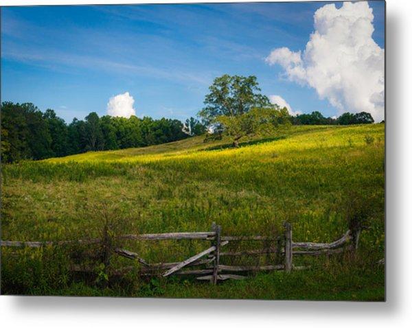Blue Ridge Parkway - Summer Fields Of Yellow - Lone Tree Metal Print
