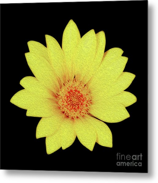 Metal Print featuring the digital art Sun Flower by Kenneth Montgomery