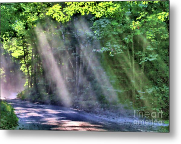 Metal Print featuring the photograph Sun Streaks by Debbie Stahre
