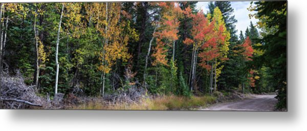 Sunday Drive Wide Panoramic View Metal Print by James BO Insogna
